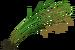 Riceweed.png