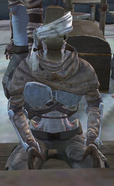 Gunner Recruit