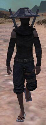 Blackdragonninja-0.jpg