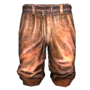 Worn-out Shorts.png