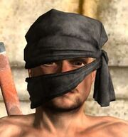 Ninja Zukin.jpg