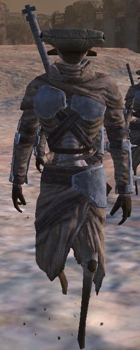 Hive Bandit Leader