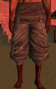 Samurai Clothpants.jpg