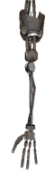 Thief's Arm (right).png