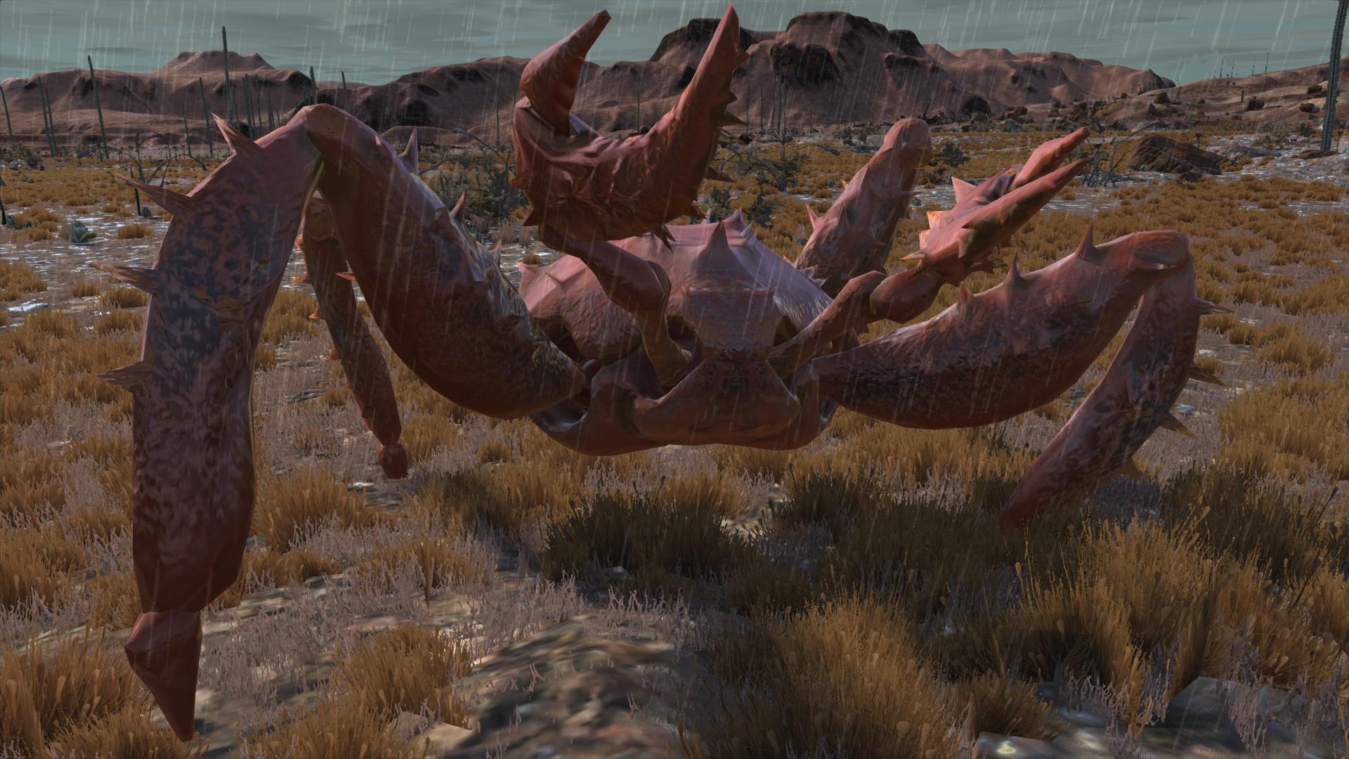 Elder Crab