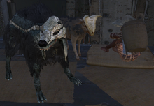 Suspiscious Settler with his pets.png