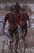 Femalecannibals