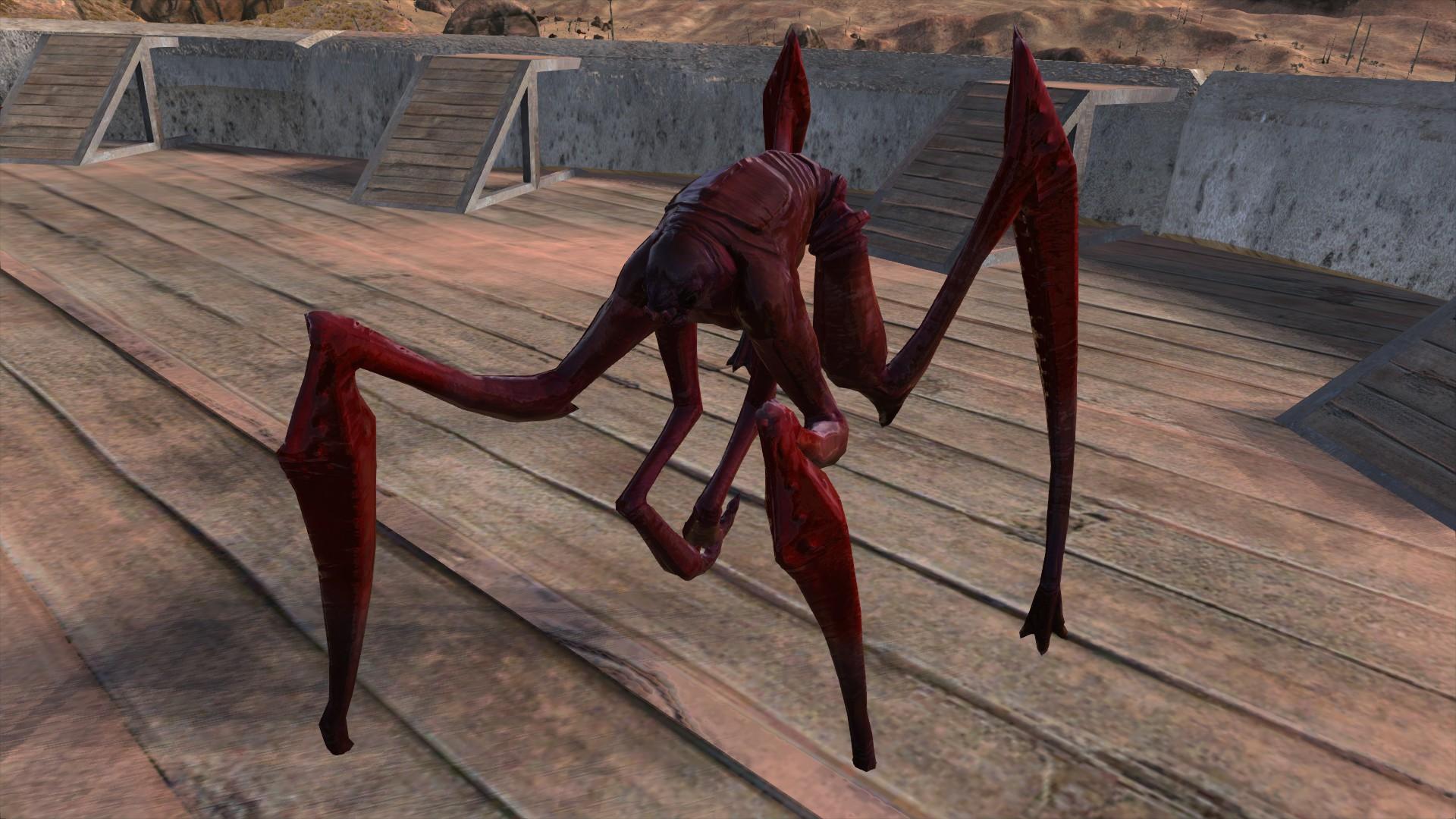 Elder Blood Spider