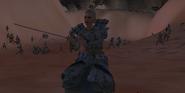 Samuraicombat