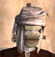 Turban equipped.png