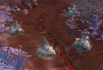 Hive village6
