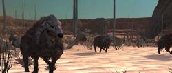 Boneyard wolf.png