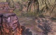 Shrieking Forest 2