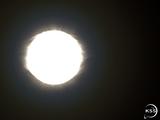 Kerbol (Star)