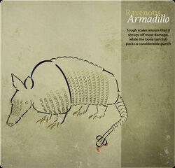 Card Armadillo.jpg