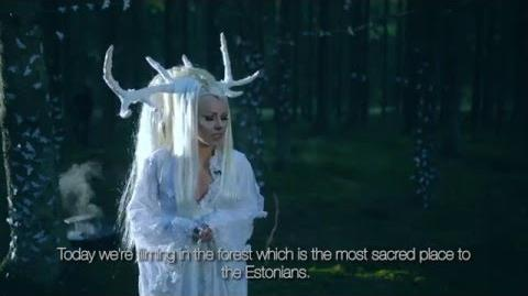 Feral Hearts - The Vision - White Stag