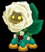 Rosa della Calma