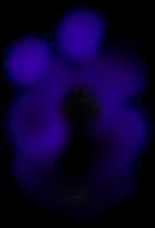 Oscurità.png