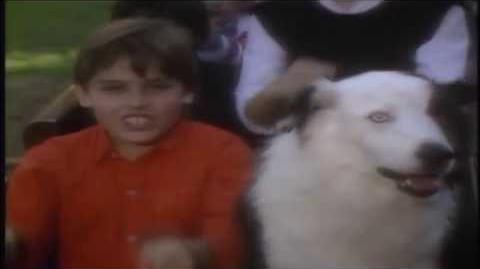 Kidsongs - Daylight Train Original version HD 1080p
