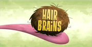 46-1 - Hair Brains.png