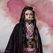Nezuko profile (Stage Play 2)