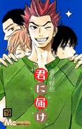 Kimi ni Todoke Manga v19 cover jp