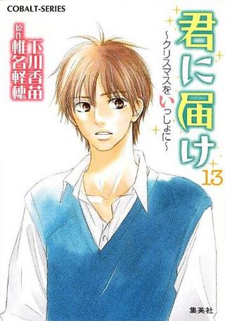 Kimi ni Todoke Light Novel v13 cover.png