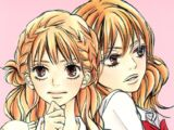 Kimi ni Todoke Manga Volume 11