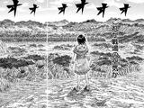 Sanyou Aftermath Arc