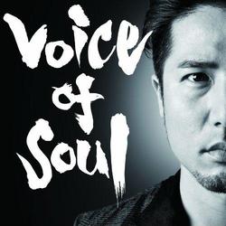 Voice of Soul portrait.PNG