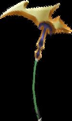 Fairer Helianthus