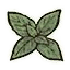 Icon herb mint.png