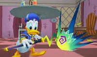 Donald wonderland