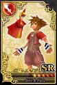 Carta SR Sora y Flora