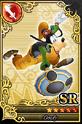 Carta SR Goofy 3