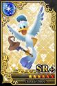 Carta SR+ Donald Pájaro