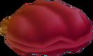 Almeja piro