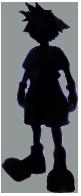 Shadow Sora