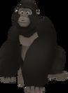 Gorila KH
