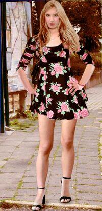 Sandra W Pain88 Skaterdress(3).jpg