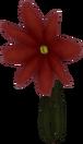 Flower (Red) KH