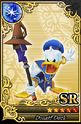 Carta SR Donald 4