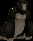 Gorilla KH