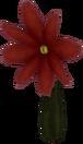 Flor Roja KH