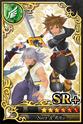 Carta SR+ Sora y Riku 4
