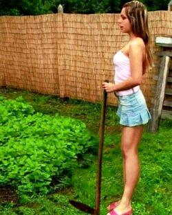 Sandra W Pain88 Garten02-a.jpg