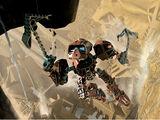 Onewa (Bionic Fantasy)