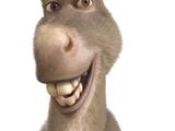 Donkey (TTR)