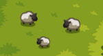 Scn2 Sheep.PNG