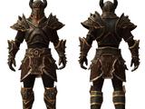 Armor Set of Bolgans' Bane